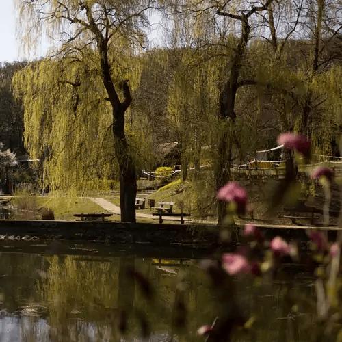 romantikus szállás az erdőben